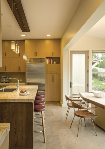 Marin residence kitchen